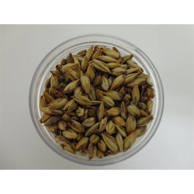 Caramel Vienne 20 L Malt 1 / 4 lb