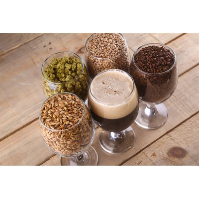 Beer Making Course in French - Next date: TBD.